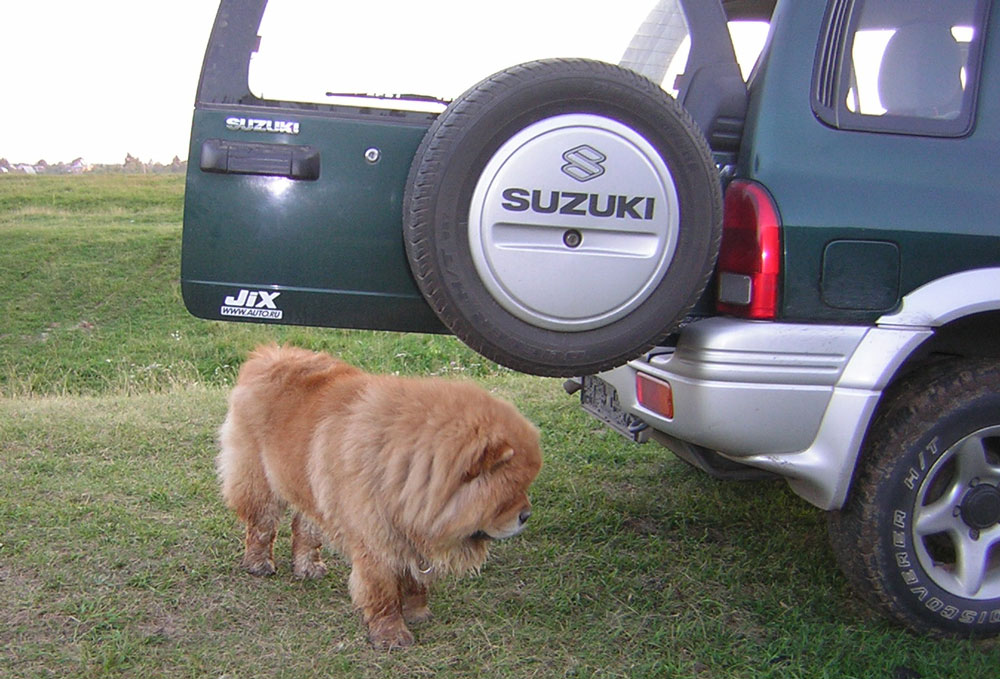 Автосервис FXCar - официальный сервис Всероссийского клуба Suzuki